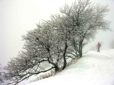 Schneeschuhabenteuer