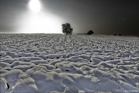 schneevongestern.jpg