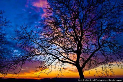 Sonnenuntergang Katzenberg