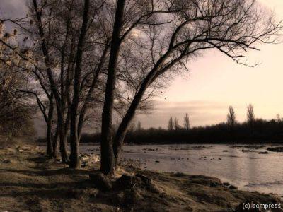 Altrhein Isteiner Schwellen