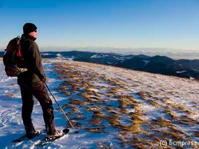 Alpensicht vom Belchen