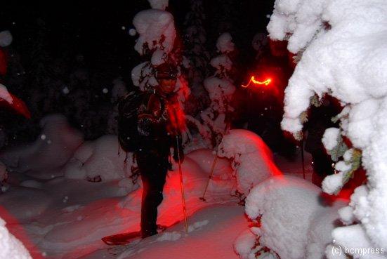 night-snow-2.jpg