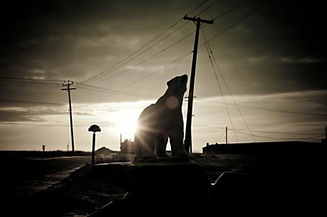Churchill bezeichnet sich als Polar Bear Capital of the World