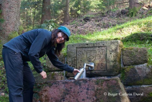 Black Forest pur - quellfrisches Schwarzwaldwasser