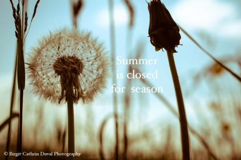 Summer is closed for season