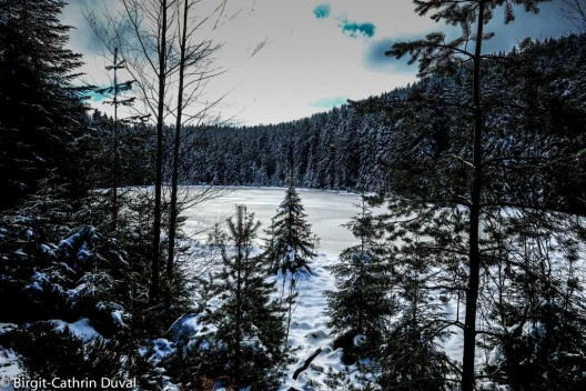 Der Herrenwieser See
