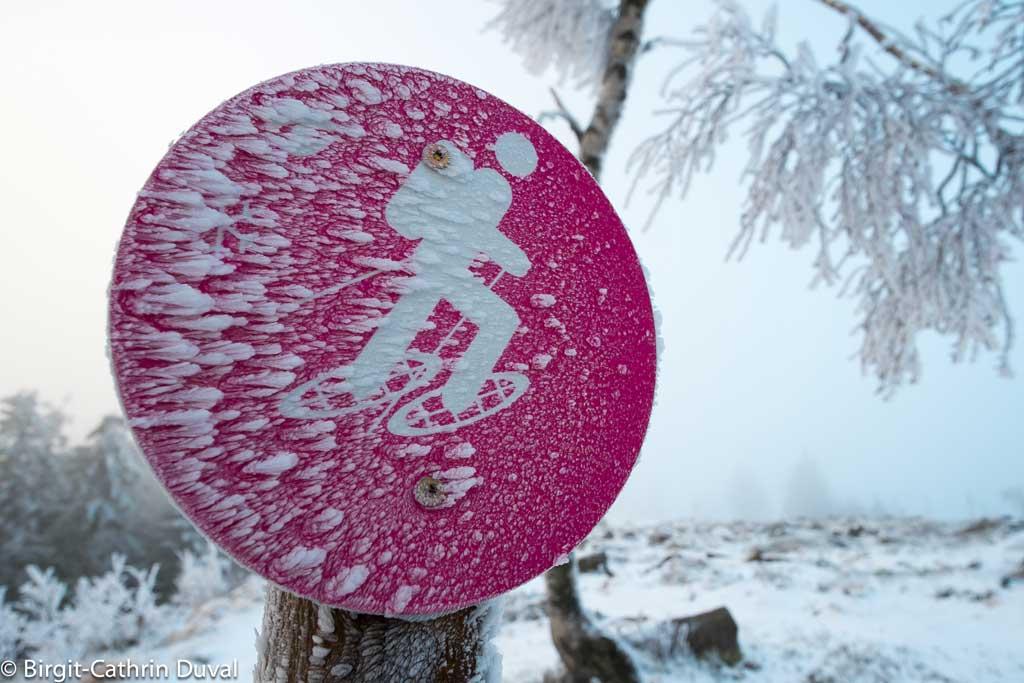 Schneeschuhtrail auf der Hornisgrinde