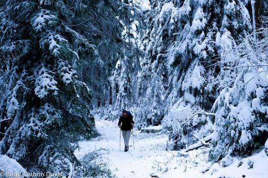 Der Zauber des Westwegs bei Winter
