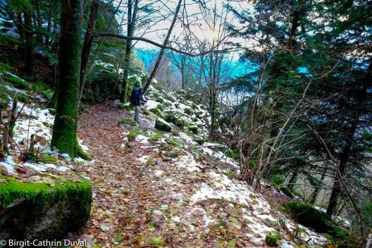 Abstieg ins Murgtal Richtung Forbach