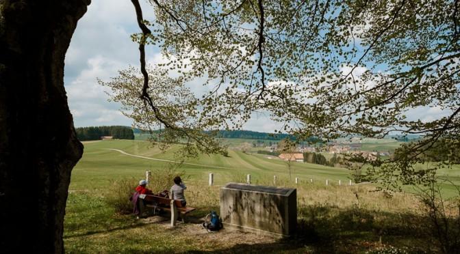 Kraftorte im Schwarzwald: Der Totenbühl