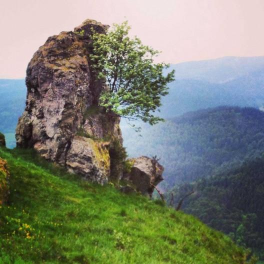 Mystisch wirkt der 1268 Meter hohe Hohfelsen