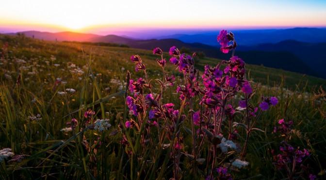 Sommersonnenwende auf dem Feldberg