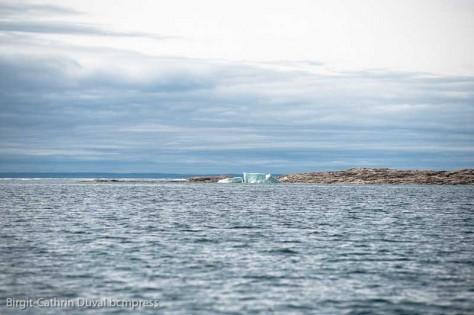 Sogar im Sommer treiben Eisberge in der Bay