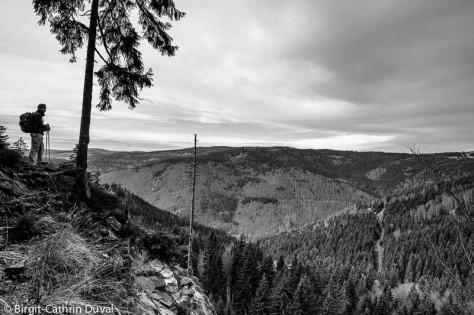 Ausblick von der Felskanzel zum Feldberg