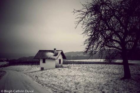Rebbammerthüsli im Winter