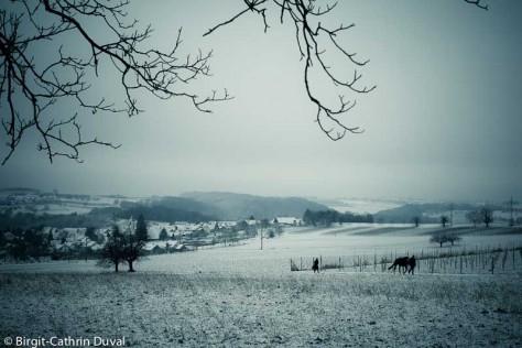 Ein Hauch von Winter über dem Markgräferland