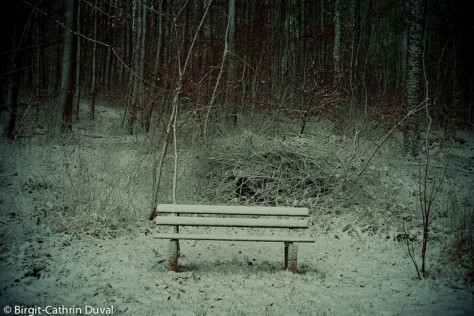 Die Stille des Winters