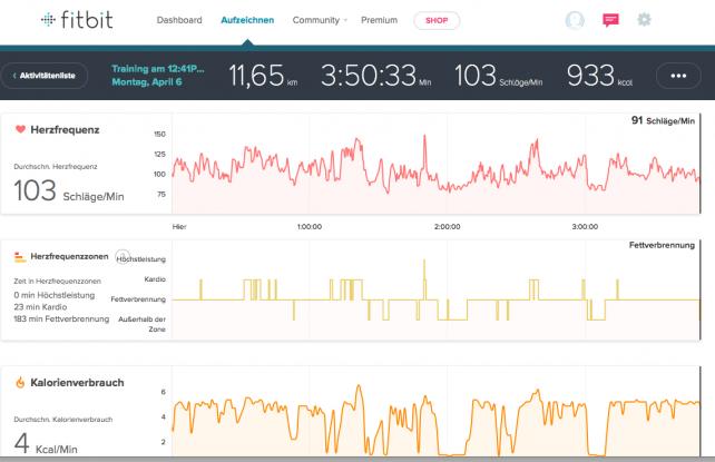 Auswertung der Daten mit fitbit Dashboard
