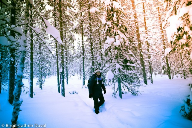 Unterwegs im Winterwunderland