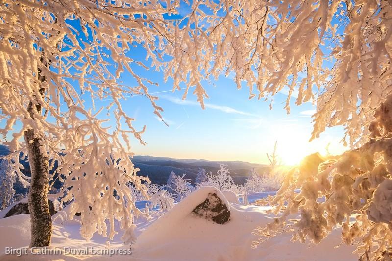 Guten Morgen! Mit solchen Ausblicken in einen neuen Tag starten - unbezahlbar!