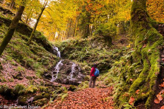 Am Holchenwasserfall finden durstige Wanderer eine Überraschung