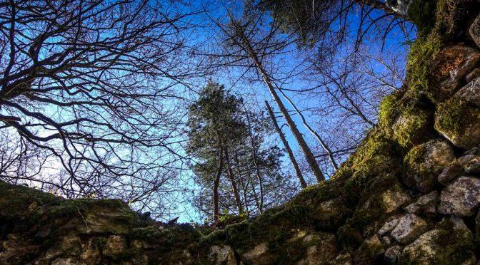Wilde Wege: Zur Rotenburg bei Wieslet im Kleinen Wiesental