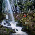 Albsteig Schwarzwald: Abenteuer im wilden Schluchtendschungel