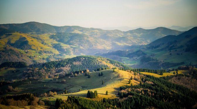 Kraftorte im südlichen Schwarzwald – Interview im Markgräfler Tagblatt