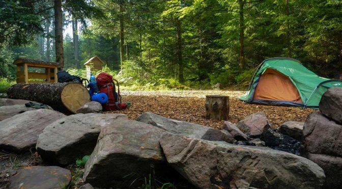 Trekking-Abenteuer im Schwarzwald boomt