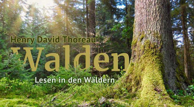 Walden im Schwarzwald