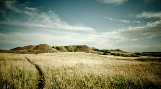 Getting Lost – unter Klapperschlangen und wilden Büffeln